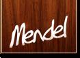 Joe Mendel Instruments